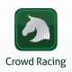 Crown Racing